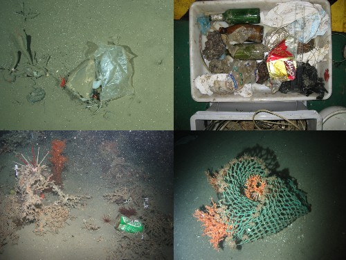 Survey Finds Trash In The Remotest Ocean Floors