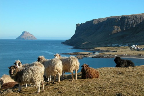 Faroe Islands Wants To Sequence The Genes Of Every One Of Its Citizens