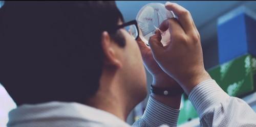 DARPA Gives MIT Lab $32 Million To Program Living Cells