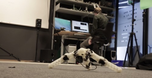 These Adaptable, Self-Replicating Robots Surely Won't Tear The World Apart ... Right?