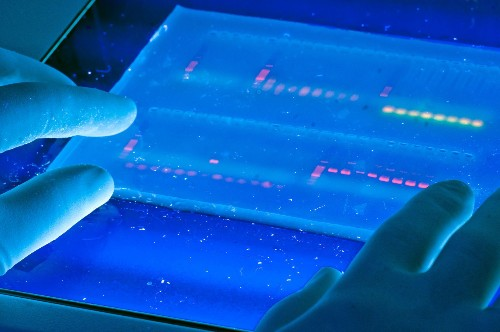 Scientists Detect Which Patients Are Resistant To Genetic Diseases