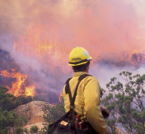 How Apps Could Help Firefighters Combat Wildfires