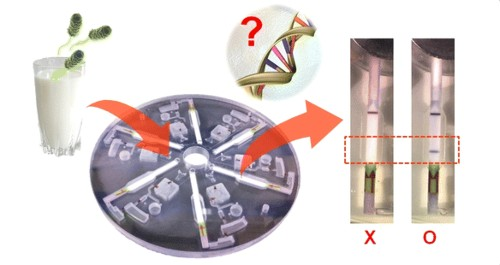 This Spinning Disk Can Detect Salmonella In 30 Minutes