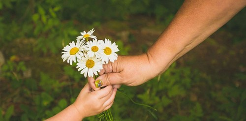 From an evolutionary perspective, does it make any sense to be nice?