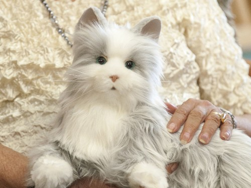 Will Your Next Pet Be A Robotic Cat?