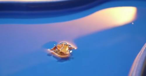 Watch A Tiny Origami Robot Crawl, Climb, Swim, and Dissolve