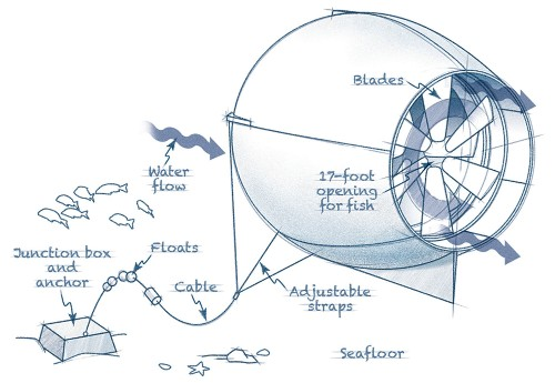A Generator That Harnesses Energy From Ocean Currents