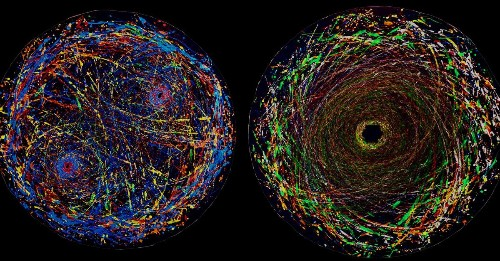 The 8 best science images, videos, and visualizations of the year