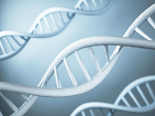Your DNA Can Now Be Used Against You In Court Without Your Consent
