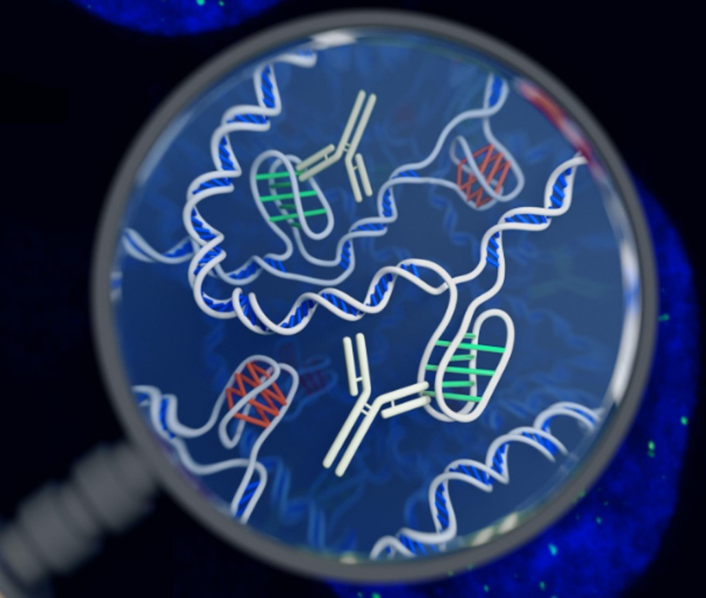 Genetic Updates - Magazine cover