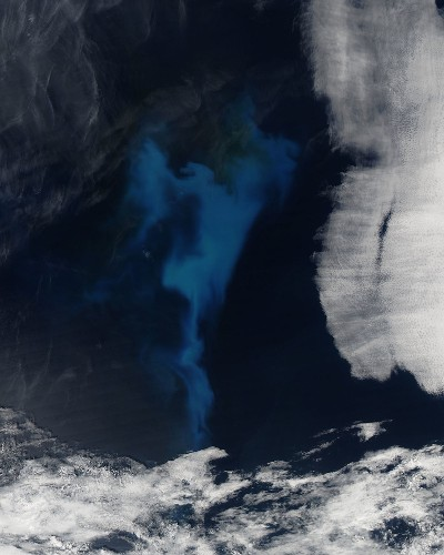Big Pic: A Stunning View Of Phytoplankton From Space