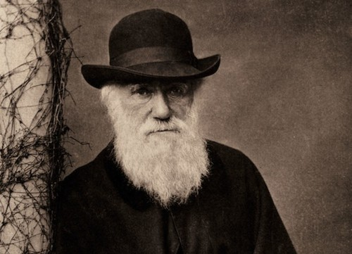 Darwin Wasn't A Complete Chauvinist After All