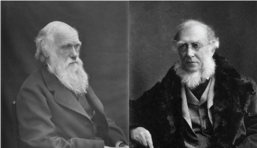 300 Previously Unpublished Darwin Letters To Be Posted Online
