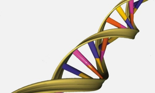 Dad Sequences Daughter's Genome To Pinpoint Her Rare Syndrome