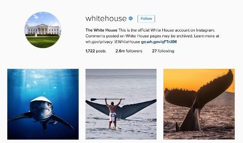 Ocean Photographers Take Over White House Instagram