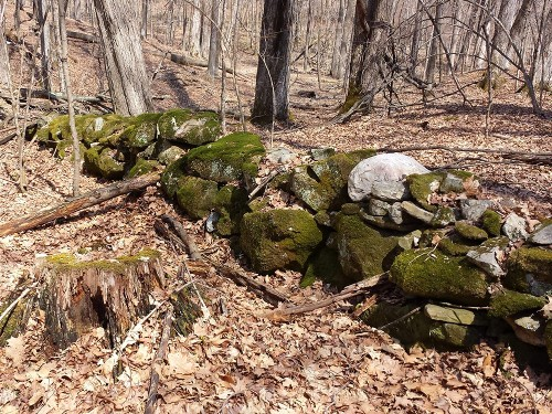 Old stone walls hold secrets to Earth's wandering magnetic north