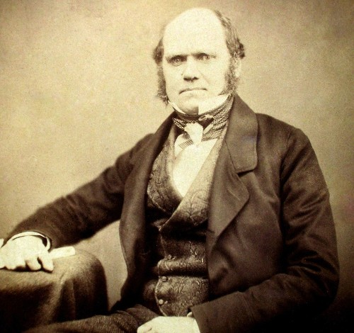 Letters From Charles Darwin