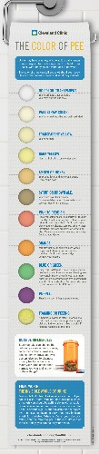 Is Your Pee The Right Color? [Infographic]