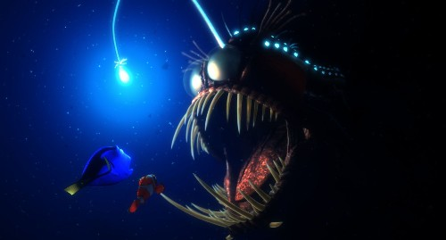 Rare Anglerfish Caught On Video