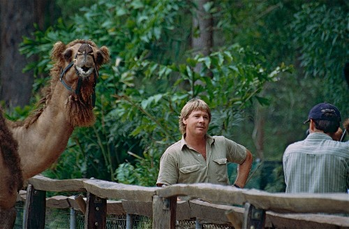 A decade after his death, Steve Irwin is still the face of wildlife education
