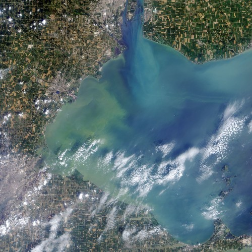 This Is Lake Erie's Toxic Algal Bloom As Seen From Space