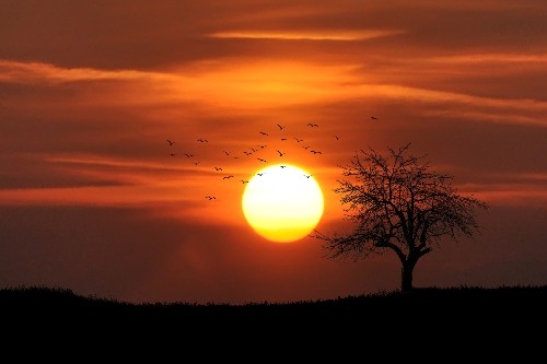 What gives a sunset its color?