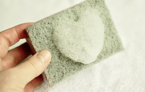Your kitchen sponge could have more bacteria than a toilet seat