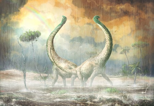 This newly discovered titanosaur had heart-shaped tail bones