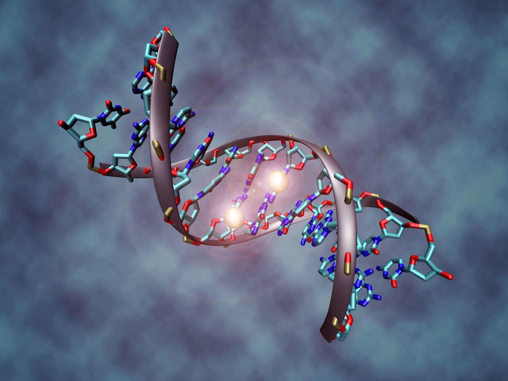Could Having Your DNA Tested Land You In Court? - Magazine cover