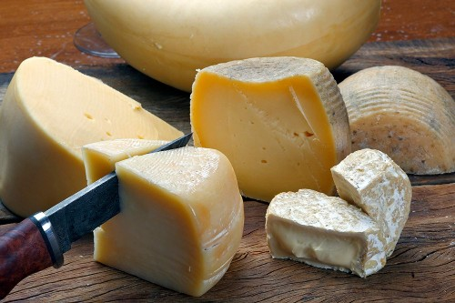 Cheese played a surprisingly important role in human evolution