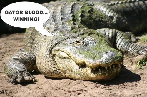 Alligator Antimicrobials May Help Us In A Post-Antibiotic Era