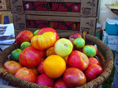 Comparing Wild Tomatoes To Supermarket Tomatoes For Delicious Genes