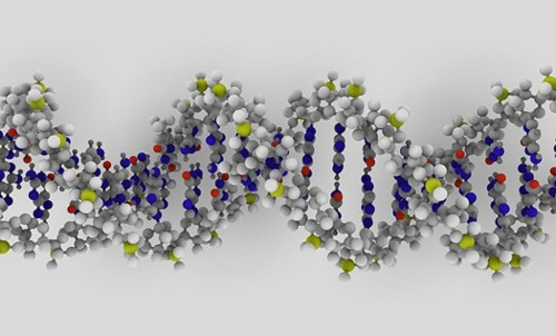 The Popular Science Guide To DNA