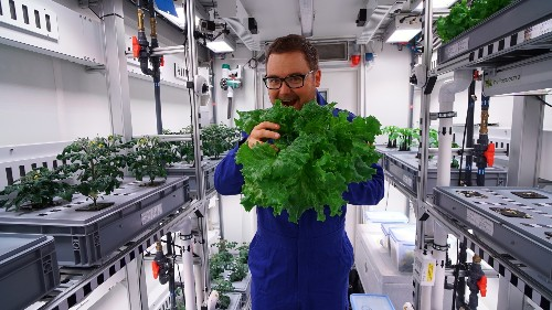 The first Antarctic greenhouse harvest may lettuce go to Mars