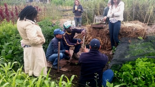 Small farmers from around the world learn how they can grow far more food