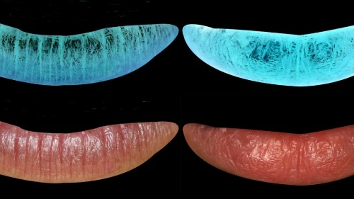 What your lips are saying about you