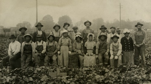 How Japanese and Mexican American farm workers formed an alliance that made history