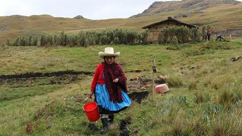 Violence, death threats confront latest winner of prestigious environmental prize