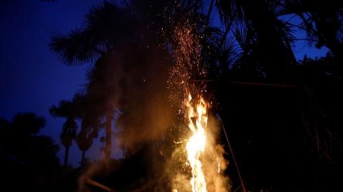 Brazil faces international backlash over Amazon fires, deforestation