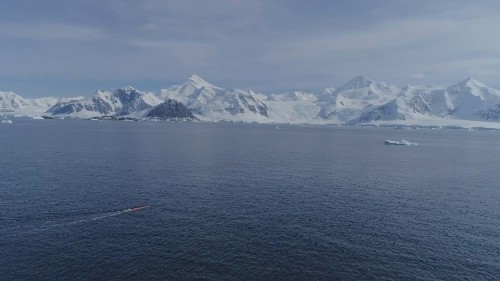 This submarine's historic tour under Thwaites Glacier will help scientists predict sea level rise