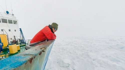 This Antarctic expedition is chilling while it waits for rescue boats to free ship from pack ice