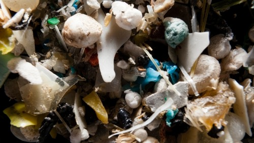 Microplastics have turned up in the remote Arctic Ocean, which means they're everywhere