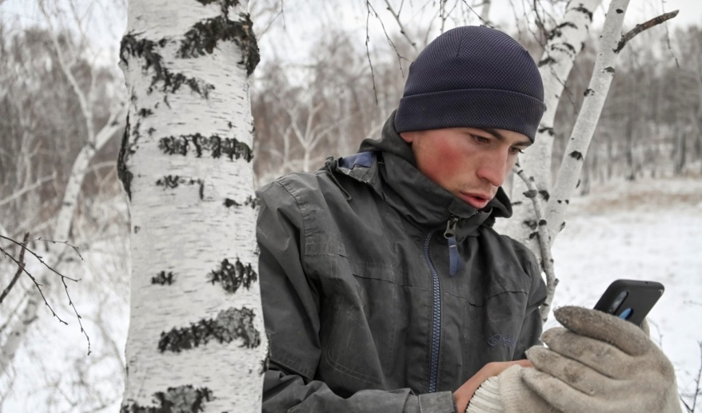 Siberian student scales birch tree for internet access as classes move online