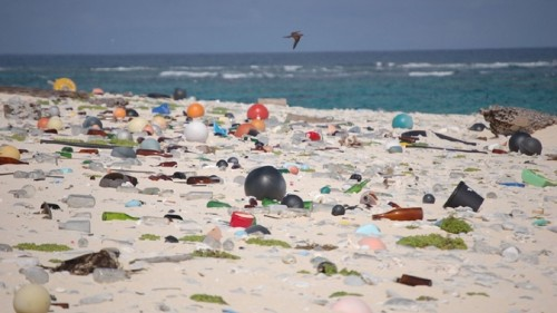 'Beyond the crisis point on plastic waste': New bill is wake-up call, says senator