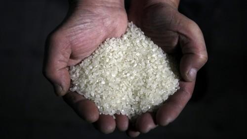 Nigeria seizes shipment of fake plastic rice as food prices soar