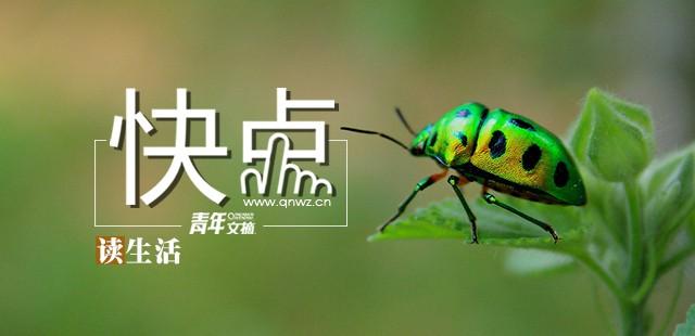 妙语 - Magazine cover
