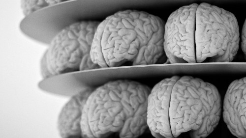 Alzheimer's disease could be transmitted through some medical procedures