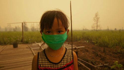 """Photos: Inside the toxic haze, a """"crime against humanity"""" caused by Indonesia's fires"""