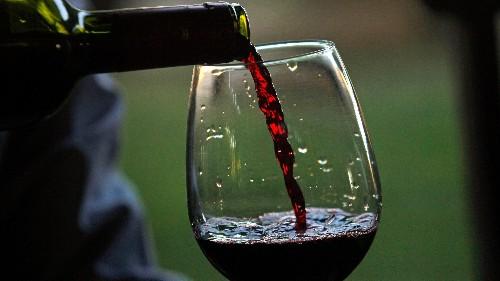 How to taste fancy wine like a boss