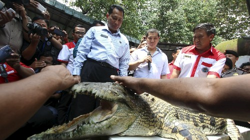 Indonesia adds even scarier wildlife to its crocodile-guarded prison plan